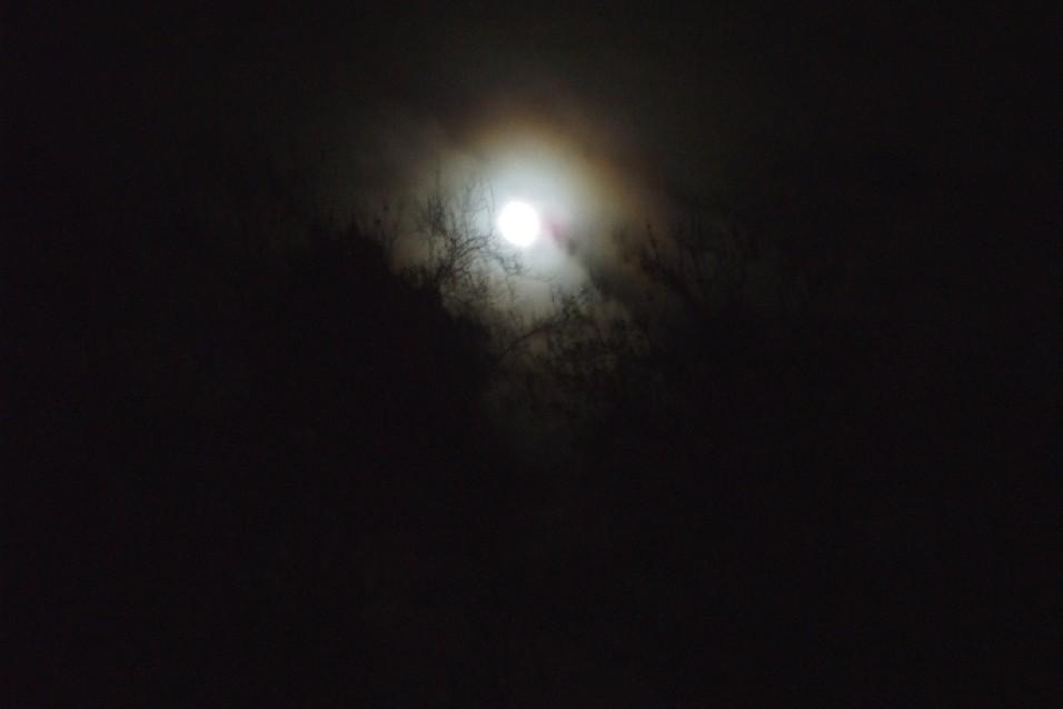 einlicht geht auf in der dunkelheit